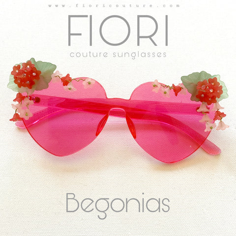 Begonias Rose Colored Glasses