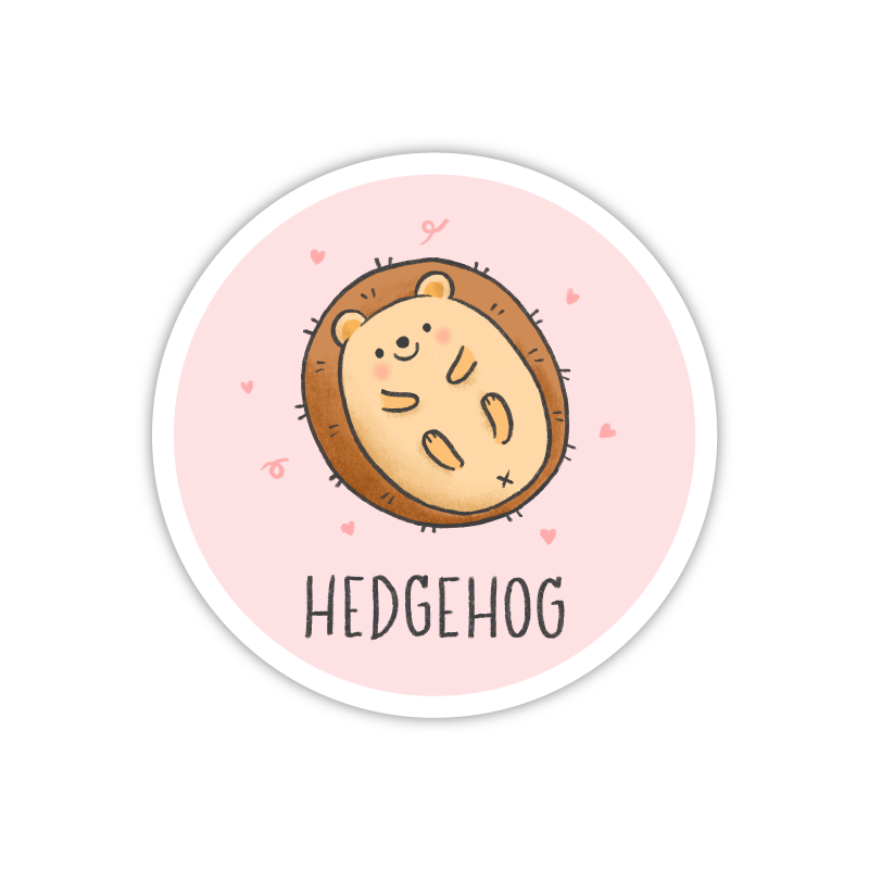 Plain Hedgehog
