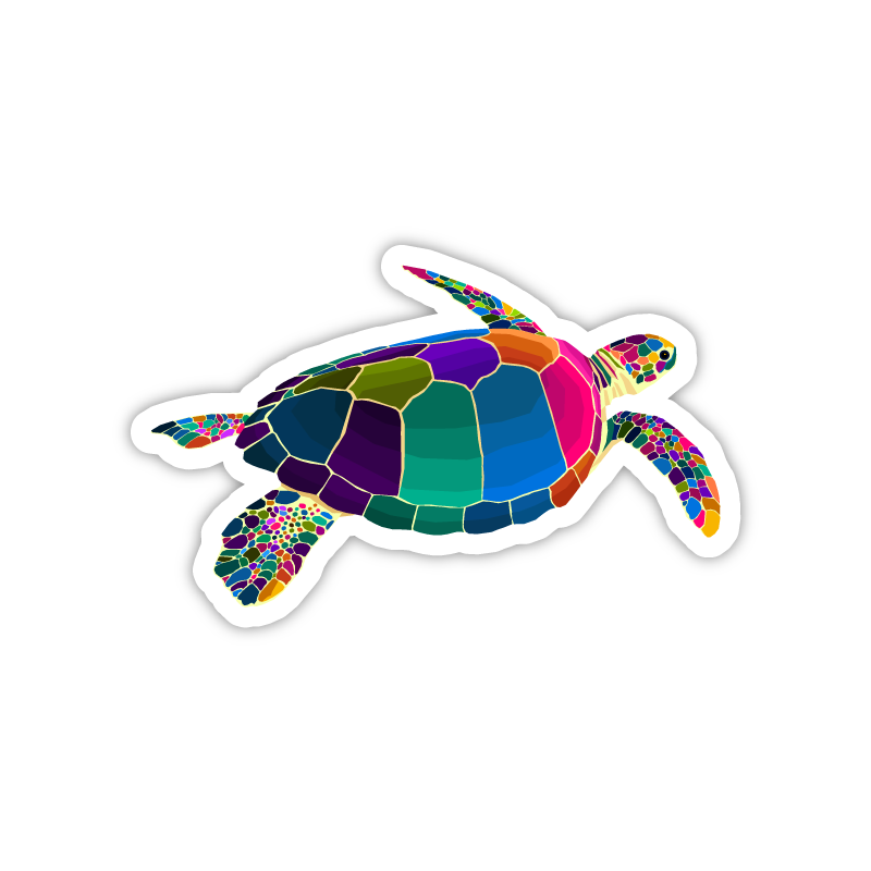 Rainbow Sea Turtle