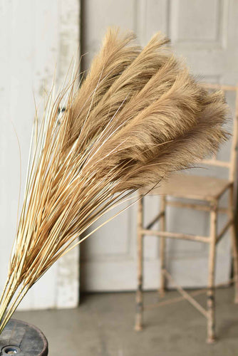 Golden Grain Stems