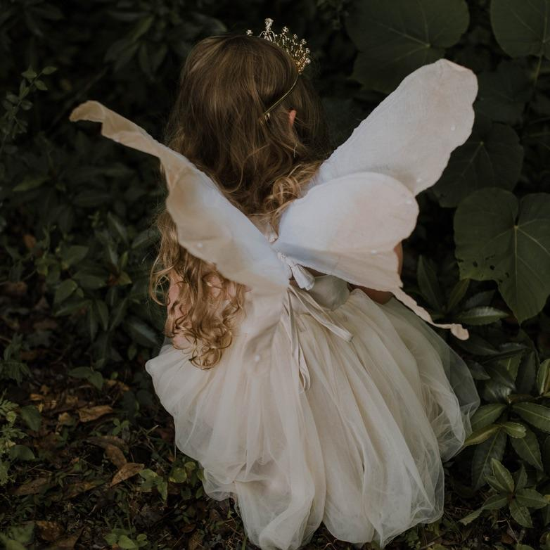 flower fairy wings (3 colours)