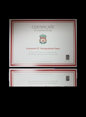 Dominic Solanke hand signed Liverpool 2017-18 Home Shirt in Deluxe Classic Frame