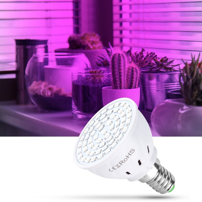 Phyto Led B22 Hydroponic Growth Light E27 Led Grow Bulb MR16 Full Spectrum 220V UV Lamp Plant E14 Flower Seedling Fitolamp GU10 - mbrbproducts