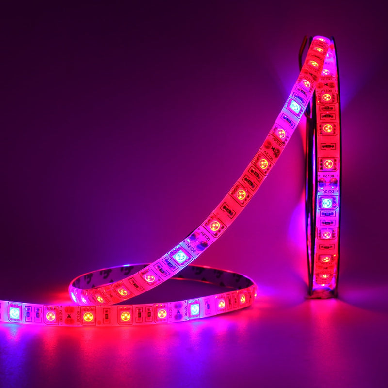 5 M LED Phyto Lamps Full Spectrum LED Strip Light 300 LEDs 5050 Chip LED Fitolampy Grow Lights For Greenhouse Hydroponic plant - mbrbproducts