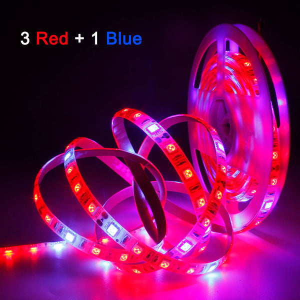 Plant Grow lights 1m 2m 3m 4m 5m Waterproof Full Spectrum LED Strip Flower phyto lamp Red blue 4:1 for Greenhouse Hydroponic - mbrbproducts