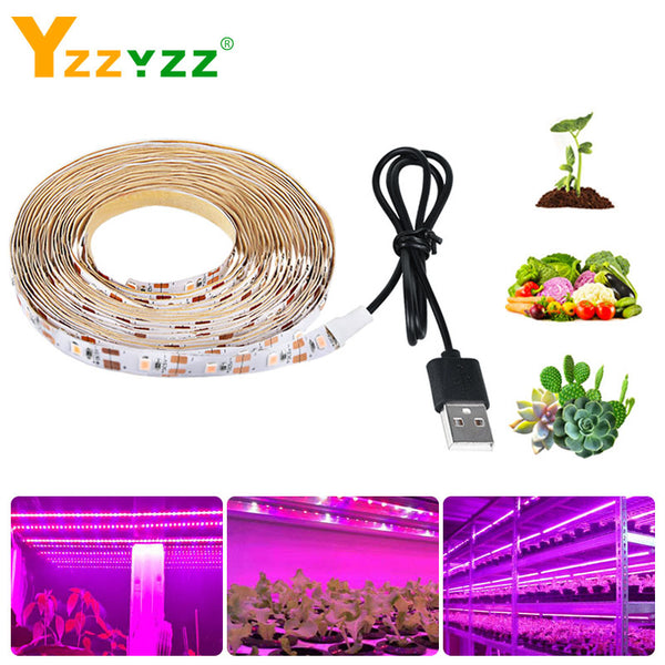 Full Spectrum LED Grow Light USB LED Strip 0.5m 1m 1.5m 2m 3m 2835 SMD LED Phyto Lamp for Greenhouse Hydroponic Plant Growing - mbrbproducts