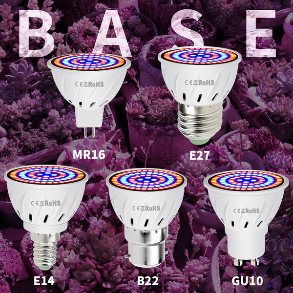 E27 220V LED Grow Light GU10 Fitolamp E14 LED Lamp For Plants 48 60LEDs Full Spectrum MR16 Phyto Lamp GU5.3 Seedling Plant Light - mbrbproducts