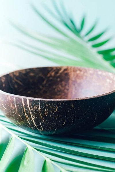 COCONUT BOWL POLISHED - LARGE
