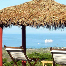 "Load image into Gallery viewer, Mexican Palm Tiki Thatch Runner Roof Roll 30""x 27' - Palapa Umbrella Thatch Company Online"