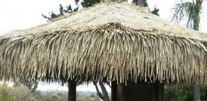 Mexican Palm Thatch Palapa Umbrella Top Cover 7ft - Palapa Umbrella Thatch Company Online