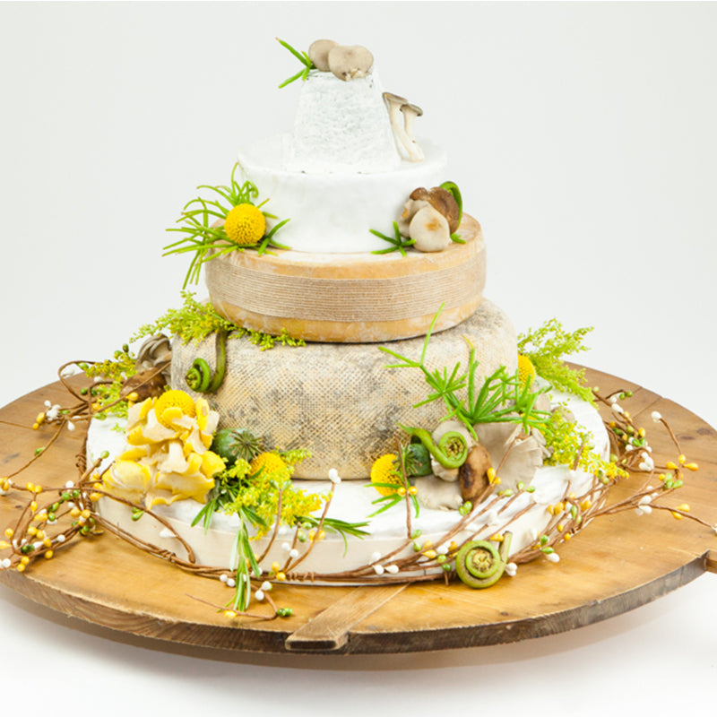 Cheese Wheel Cakes - The Cheese School of San Francisco