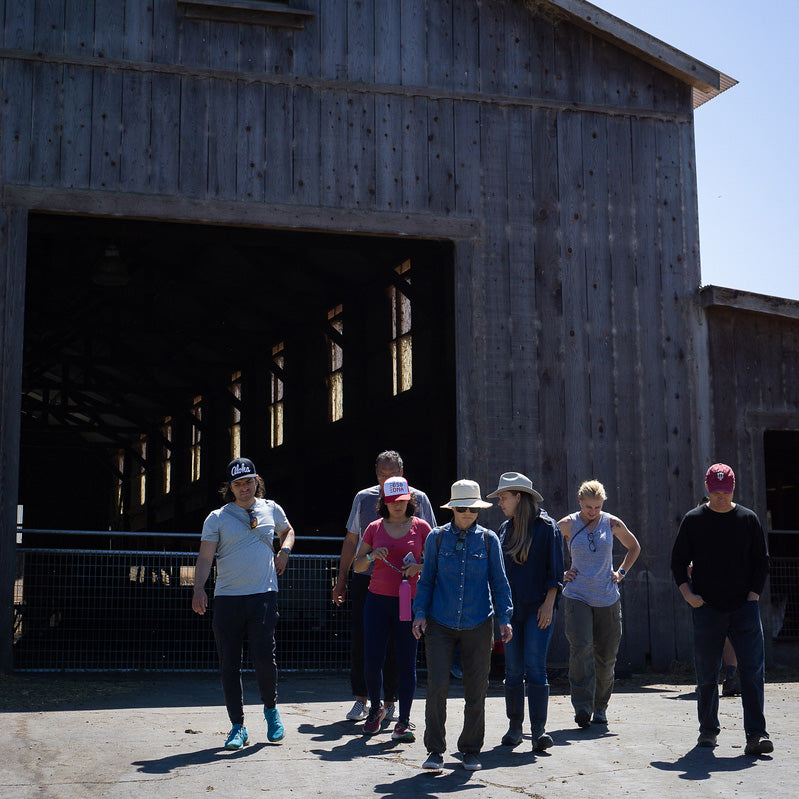 Farm Tour: Point Reyes Farmstead & Tomales Farmstead <br/> Mon, Dec 16
