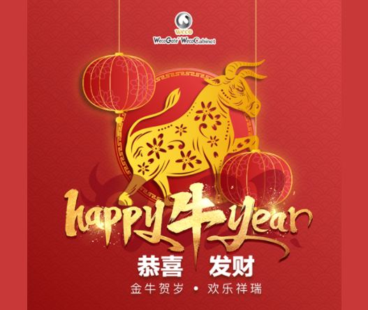 Let's celebrate and rejoice for making it into another year. 🏮 May this new year bring all of us prosperity, good luck, good health, and good fortune! 🎋 Happy Chinese New Year! 🧨