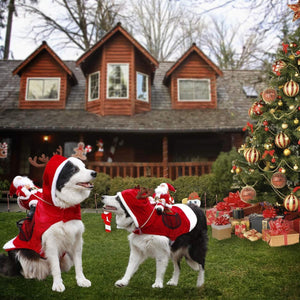 Royal Wise Running Santa Christmas Pet Costumes