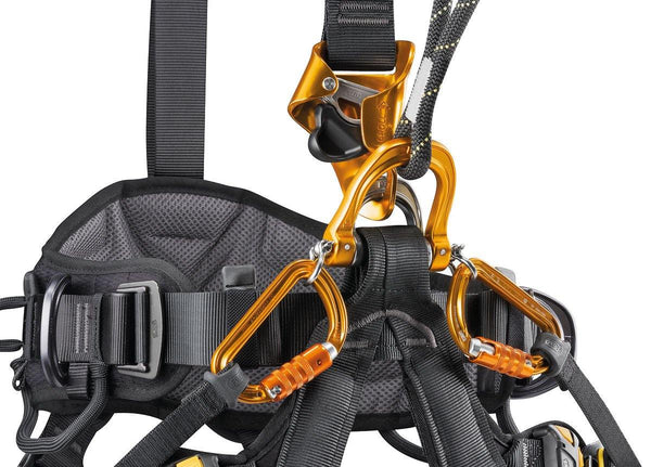 Petzl Astro Bod Fast Harness - International - view of croll.
