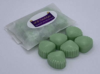 Shell wax melt sample pack - Black Raspberry and Vanilla