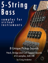 Load image into Gallery viewer, 5-String Bass Samples for Virtual Instruments