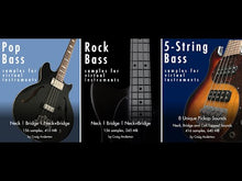 Load and play video in Gallery viewer, 5-String Bass Samples for Virtual Instruments