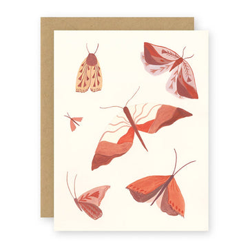 Moths Card
