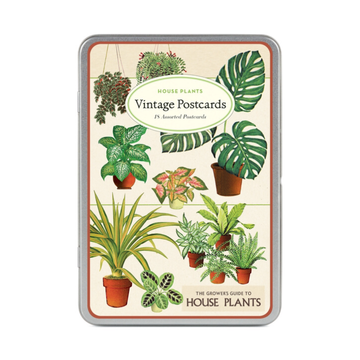 House Plants Postcards