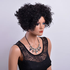 HAIRSASA | Middle Part Curly Wig | 13x4 Lace Front | Synthetic Wig | 150% Density | Black | 6 Inch
