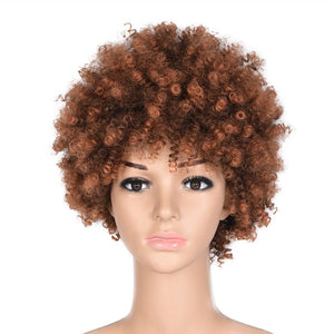 HAIRSASA | Natural Brown/Black Short Afro Curly Heat Resistant Synthetic Hair Wig