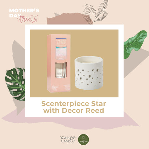 Scenterpiece Star with Decor Reed