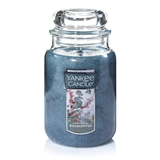 CLASSIC JAR LARGE EUCALYPTUS (623g) - PERFECT SERENITY BLISS INC.