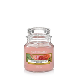 CLASSIC JAR SMALL SUN DRENCHED APRICOT (104g) - PERFECT SERENITY BLISS INC.