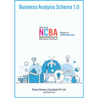 Business Analysis Schema v1.0