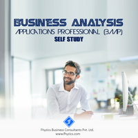 Business Analyst Training and Placement