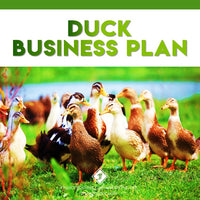 Duck-Business-Plan