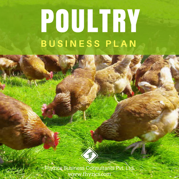Poultry Business Plan