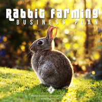 Rabbit-Farming-Business-Plan