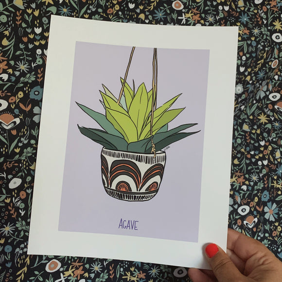 Houseplant Series: Agave