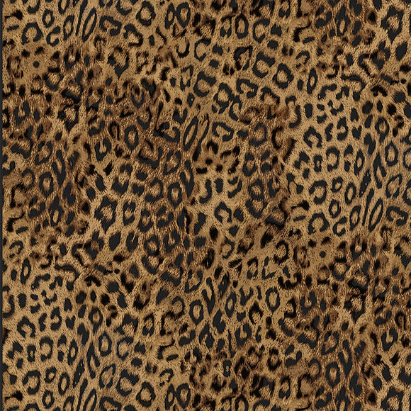 Timeless Treasures Cotton Fabric - Leopard Print - 1/2 Yard