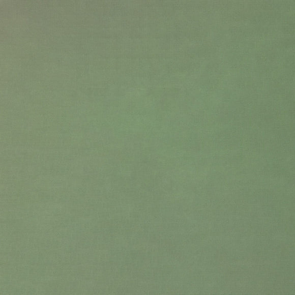 Elite - Silky Cotton Solids Japanese Quilting Fabric - Sage Green - 1/2 Yard