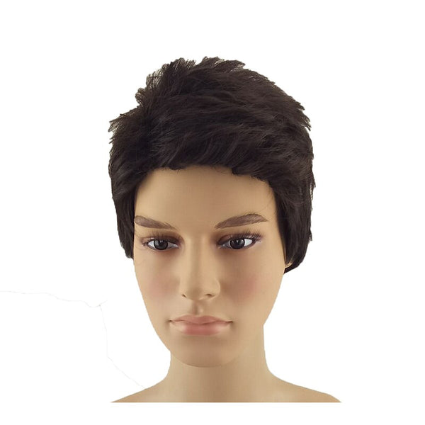 HAIRJOY Synthetic Natural Black Wig Men Women Short Curly Layered Hair Red Brown Daily Wigs Free Shipping