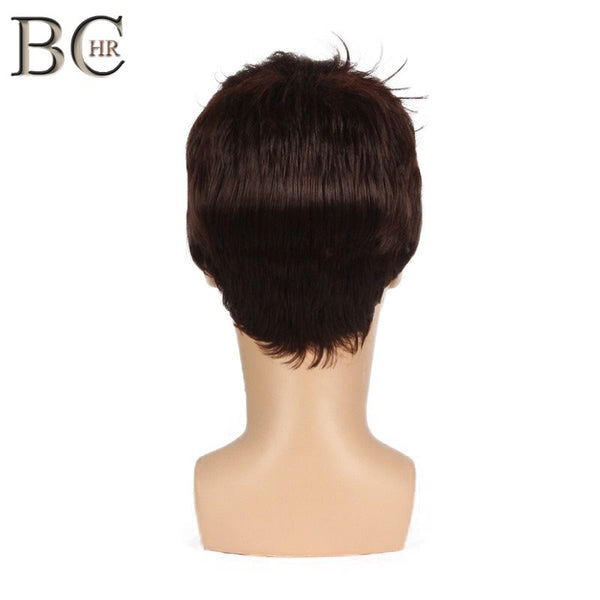 BCHR Short Men Wig Straight Synthetic Wig for Male Hair Fleeciness Realistic Natural Brown Toupee Wigs