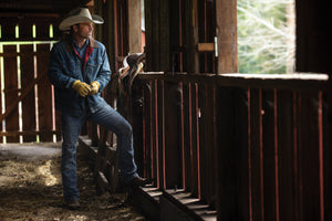 Wrangler Western Wear - Men's Work Gear