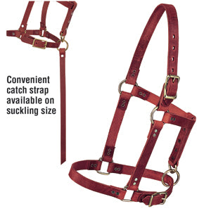 "Riveted Halter with Catch Strap, 5/8"" Suckling"