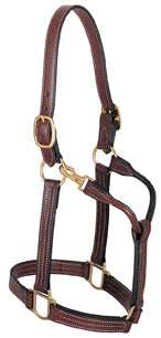 "Thoroughbred Halter with Snap, 1"" Horse"