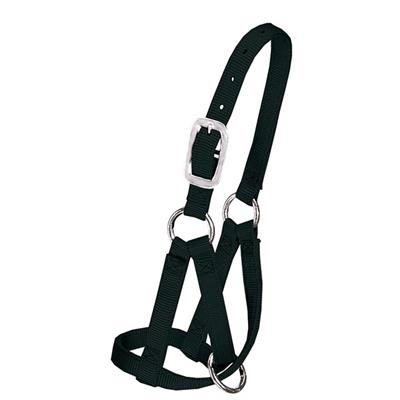 "Weaver Llama Halter, 3/4"" Small (Up to 8 Months) 35-7085"