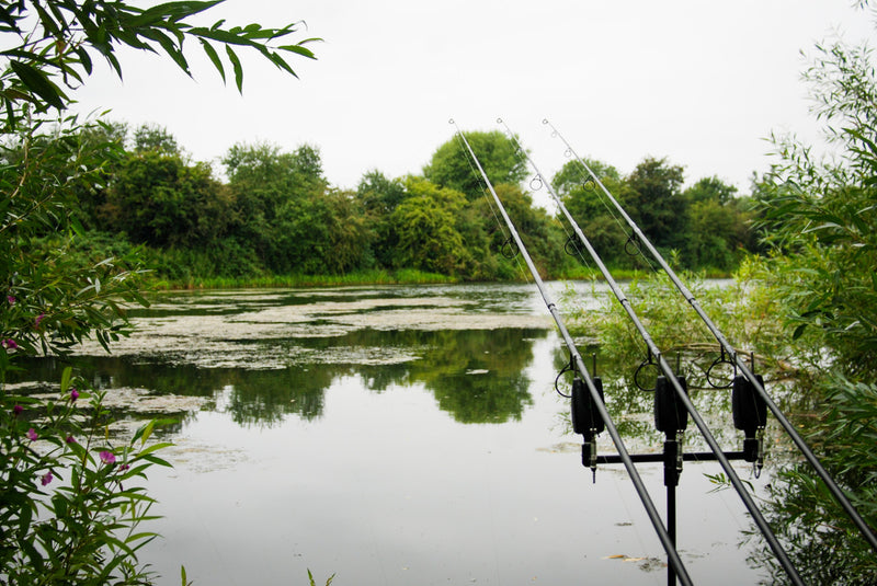 How to Fish Successfully in Weedy Areas