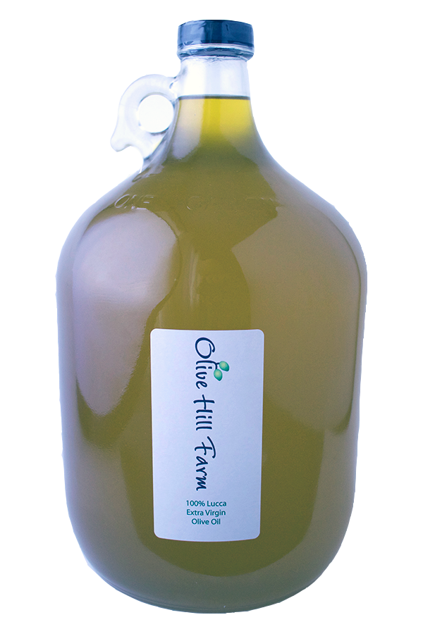 Olive Hill Farm Lucca Gallon