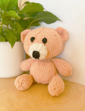 Load image into Gallery viewer, Bertie Bear Knitting Kit - Give A Knit