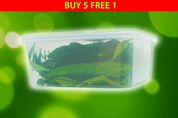 Fresh SSG Leaves (Buy 5 FREE 1)