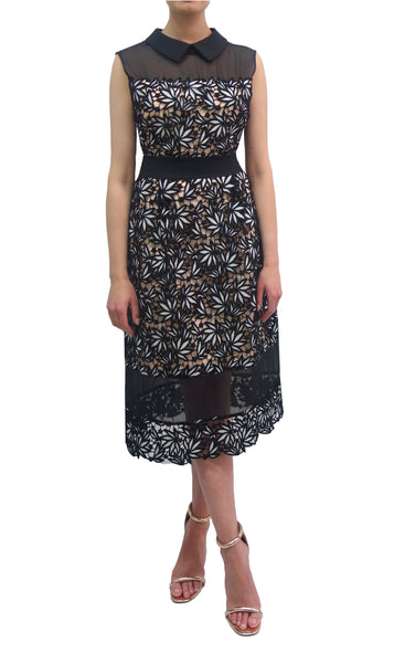 Lace Panelled Dress (W701)