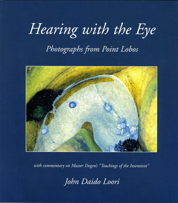 Hearing with the Eye: Photographs from Point Lobos