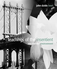 Teachings of the Insentient: Zen and the Environment (minibook)